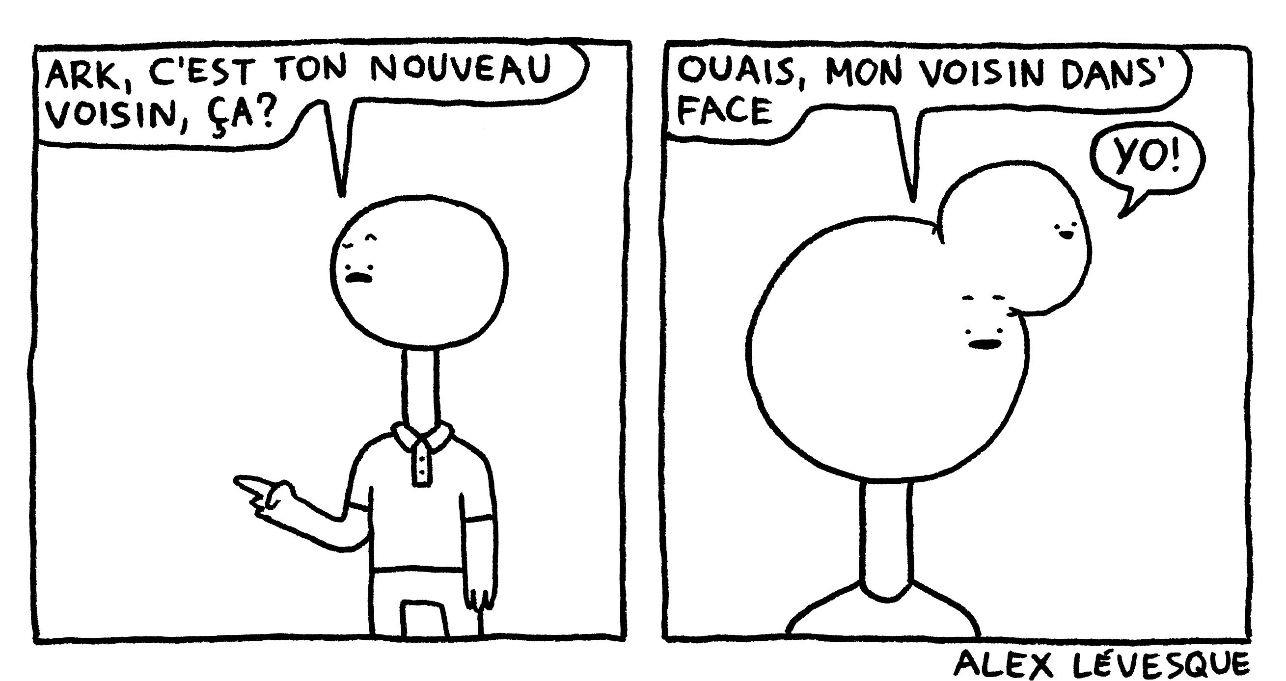 Voisin